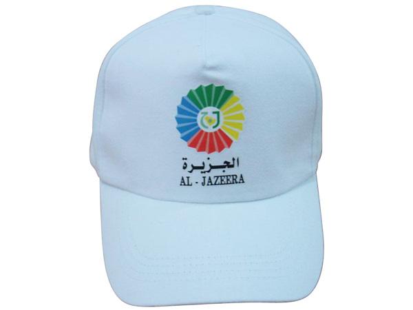 帽子系列-3
